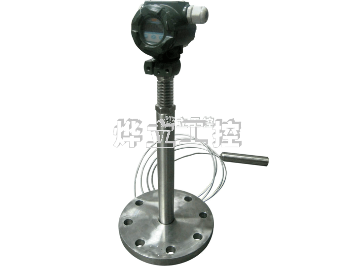WMY-AGW高温投入式变送器
